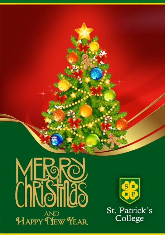 Navidad San Patricio 2013
